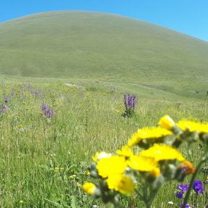 Վերել Արմաղան լեռ